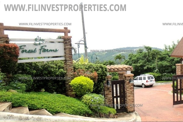 Farm lot for sale in angono antipolo forest farms